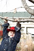 Boy hanging from a tree