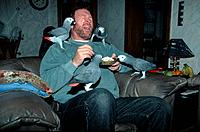 Man with African Gray Parrots, Psittacus erithacus