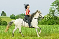 Young lady riding on a Paso Fino Horse