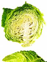 Head of Savoy Cabbage cut in half