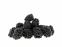 Food, Fruit, Blackberries
