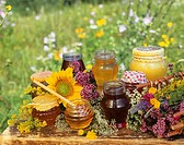 Various types of honey in the open air