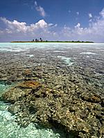 Lagoon and coral reef, South Ari Atoll, Maldives