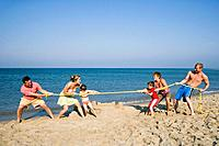 People playing tug of war on beach