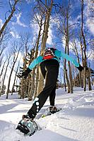 Woman snowshoeing through Dixie National Forest Cedar Mountains Utah Winter Backlit Forest