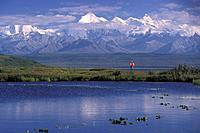 Man Views Mt.Brooks DNP Summer Interior Alaska