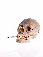 Close_up of a human skull smoking a cigarette