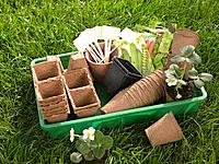 Flower pots with tags and seed packets in a crate