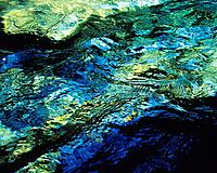 Water Surface of the River, Close Up