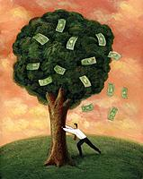 Businessman shaking a tree, with banknotes falling out