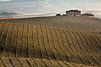 Italy, Tuscany, Farmhouse in background