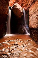 Professor Creek cascades over a chokestone deep in Mary Jane Canyon, Moab, Utah, USA