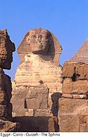 Egypt _ Cairo _ Giza _ The Sphinx