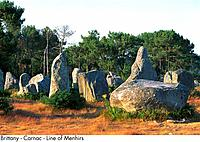 France _ Brittany _ Carnac _ Line of Menhirs