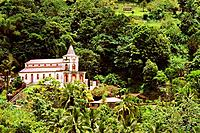 Caribbean _ Martinique _ Fonds _ Saint _ Denis