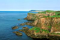 Ireland _ Dunluce Castle _ Thirteenth century