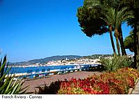 French Riviera _ Cannes