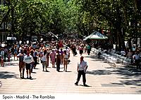 Spain _ Barcelona _ Los Ramblas Spain