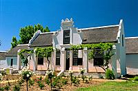 South Africa _ The Cape Vineyard _ Wine Route _ Stellenbosh _ Rhenish Complex