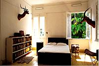 Cuba _ The Havana _ The Hemingway's Finca Vigia