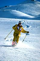 Mountain _ Skiing