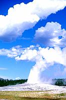 USA _ National Park _ Yellowstone _ Old faithfull Geyser