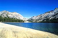 USA _ National Park _ Yosemite Tenaya Lake