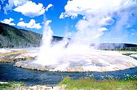 USA _ National Park _ Yellowstone _ Cliff geyser