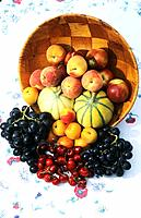 France _ Pyrenees Orientales _ Fruits du Roussillon