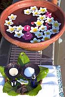 Spa _ Essential Oils and Flowers