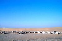 Tunisia _ The South _ Chott el Jerid Region _ Nefta surroundings _ Onk Jemel site