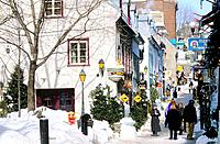 Canada _ Quebec _ Old Quebec _ Upper town _ District of Petit Champlain _ Street of petit Champlain