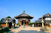 Japan _ The west of Honshu _ Nara