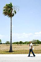 Man walking by palm tree, using cell phone, mid-distance