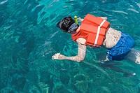 Man snorkeling in ocean, elevated view