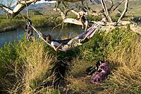 A Woman in a Hammock and Man Playing Guitar by the Owens River in Bishop California