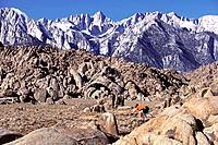 Mountain biking in big boulders in the Alabama Hills near Mount Whitney California