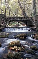 Saint Nicolas Park, River Arapitsa, bridge, Naoussa, Macedonia Central, Greece