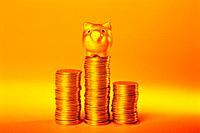Coin,Golden Pig