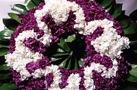 Peloponnese, Arcadia, Leonidio Easter wreaths made only with violettes