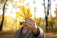 woman, forest, fall leaf, holding,