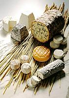 Assorted cheese kitchen cuisine food