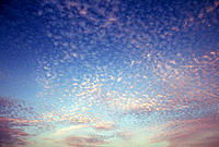 Texture of white clouds on blue sky.
