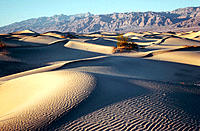 Dunes. Death Valley National Park. California. USA