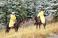 Cowboys on the range in first snow. Montana, USA