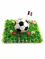 Soccer Ball with French Flag (thumbnail)