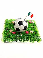 Soccer Ball with Italian Flag