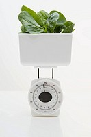 Spinach on weight scales