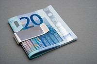 Twenty euro notes in money clip
