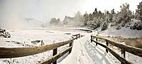Yellowstone Lake area in winter, Yellowstone National Park, Wyoming, USA